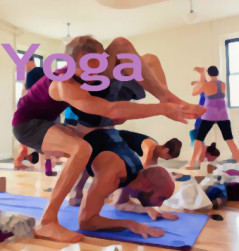 After Yoga Teacher Training?  Here's the Best Business Marketing Coaches