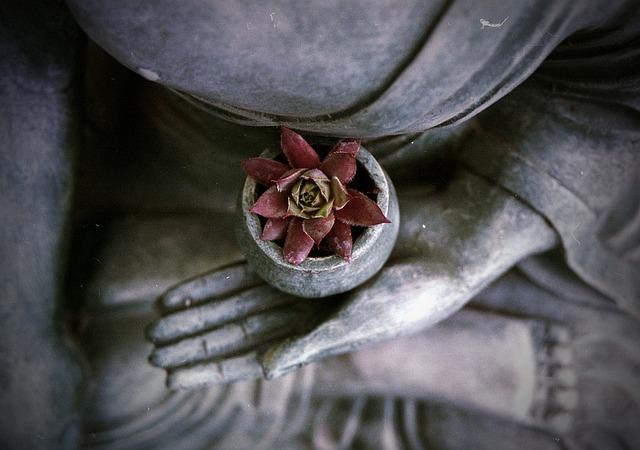 Massage~Meditation~Workshops